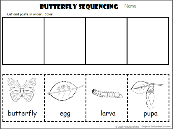 Free Butterfly Cut and Paste Worksheet
