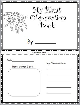 picture regarding Printable Mini Book titled Plant Observation Mini E-book - Madebyteachers