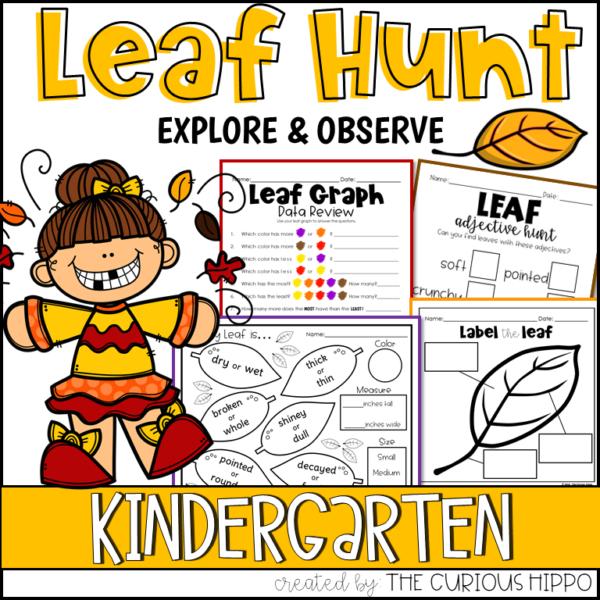Leaf Activities for Kindergarten