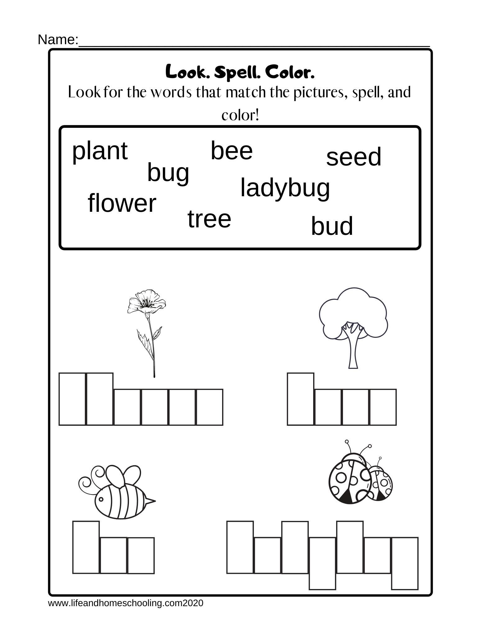 Kindergarten Spelling Worksheet - Madebyteachers