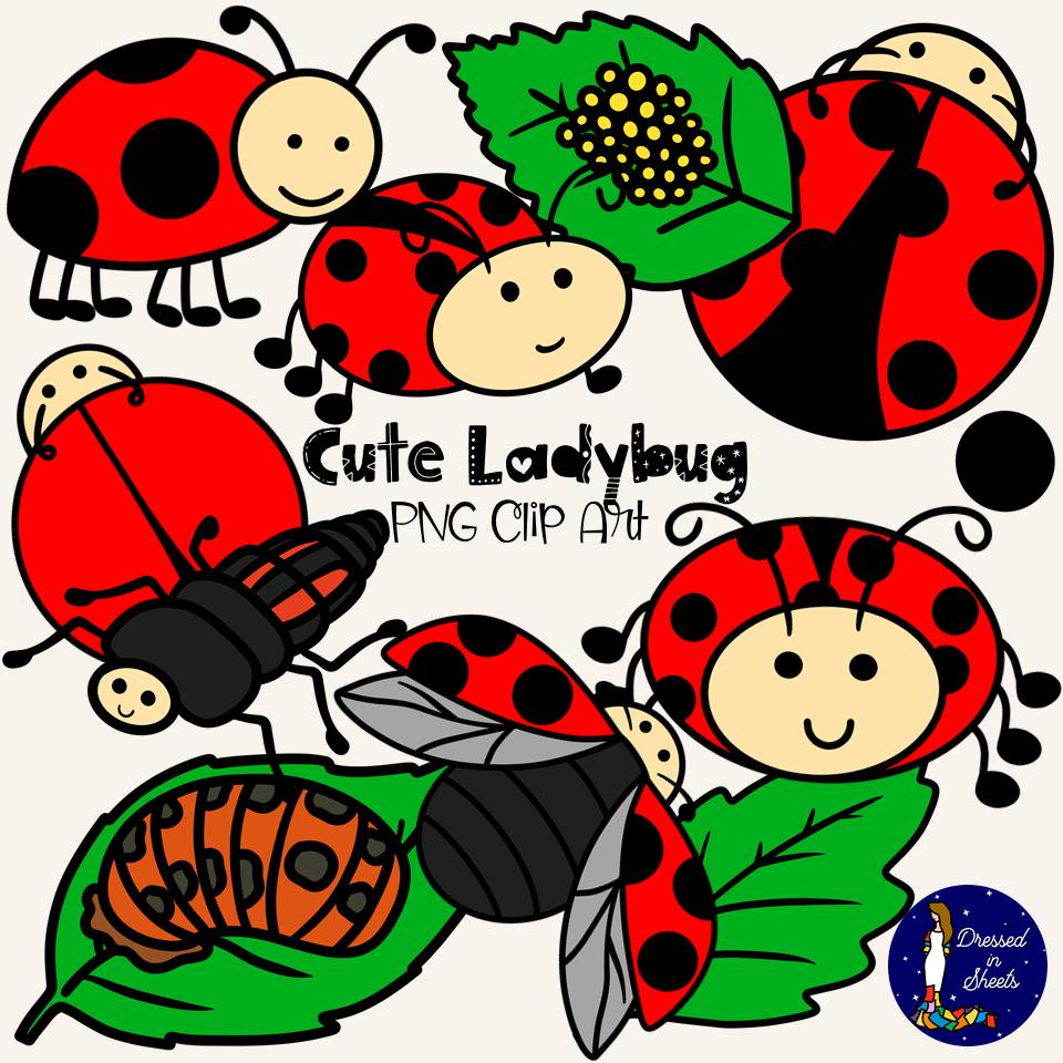 Ladybug Clip Art for Teachers
