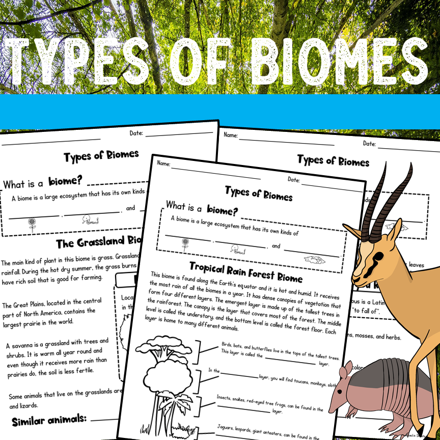 Biomes Worksheets and Activities Printable