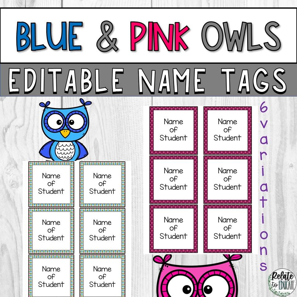 Blue & Pink Owl Editable Printable Name Tags