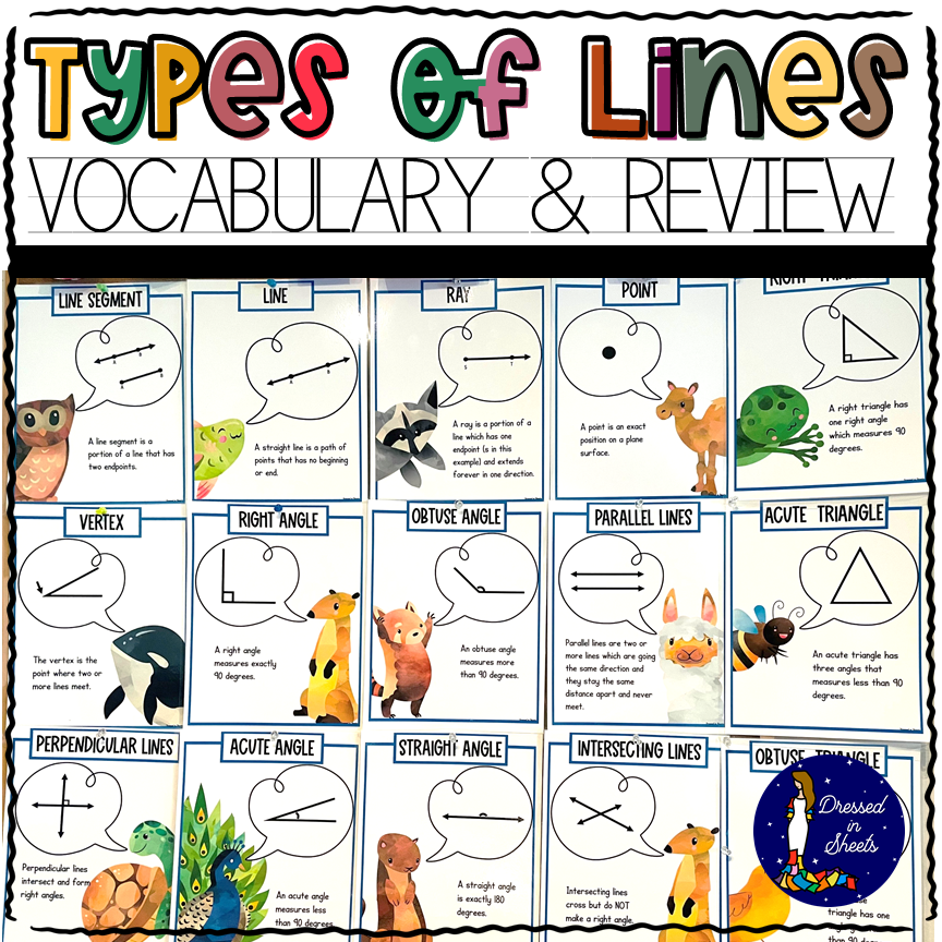 4th Grade Types of Lines Vocabulary and Review