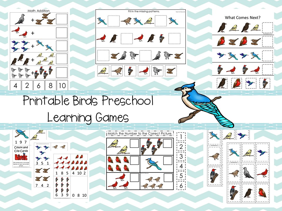 30 Printable Birds theme Preschool Curriculum Game