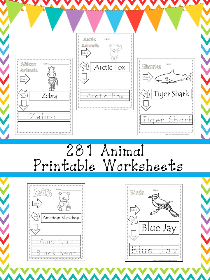 281 Animal Color and Trace Worksheets Download
