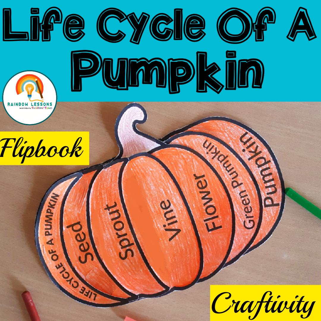 Pumpkin Life Cycle Flipbook   Pumpkin Craft